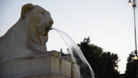 Fontana dei leoni在Piazza del Popolo 股票视频