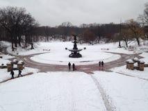 Fontana del Central Park Fotografia Stock
