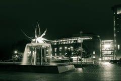 Fontana del cigno di notte Fotografia Stock