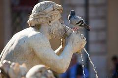 Fontana del Moro Royalty-vrije Stock Foto's