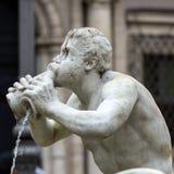 Fontana del Moro immagini stock