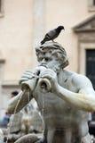 Fontana del Moro (leg Fontein vast) in Piazza Navona rome royalty-vrije stock foto