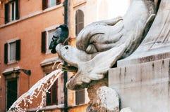 Fontana Del Panteon Wyszczególniający Obraz Royalty Free