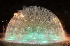 Fontana del pavone dell'acqua a Oslo Fotografia Stock Libera da Diritti