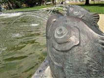 Fontana del pesce immagini stock