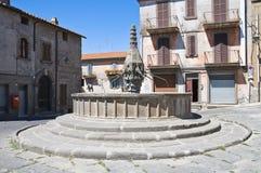 Fontana del piano Scarano. Viterbo. Il Lazio. L'Italia. Immagini Stock Libere da Diritti