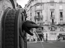 Fontana del serpente fuori del naturelle del d'histoire di musee Immagine Stock Libera da Diritti