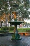 Fontana della savanna Fotografie Stock Libere da Diritti