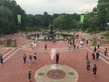 Fontana di Bethesda in Central Park Immagine Stock