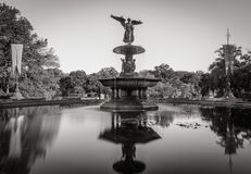 Fontana di Bethesda in Central Park Bianco e nero New York Immagini Stock