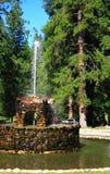 Fontana di pietra in foresta Immagine Stock