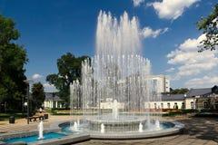 Fontana in Druskininkai Immagine Stock Libera da Diritti