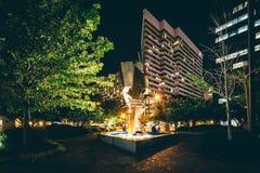 Fontana e costruzione moderna alla notte in Colombia, Carolin del sud Fotografia Stock Libera da Diritti