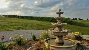 Fontana e giardino all'aperto ad una vigna in Ne Fotografie Stock Libere da Diritti