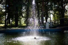 Fontana illuminata fotografie stock libere da diritti
