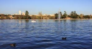 Fontana in lago, fondo della città, con le anatre Immagini Stock Libere da Diritti