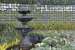 Fontana nel giardino Fotografie Stock Libere da Diritti