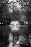Fontana nel lago swan Fotografie Stock Libere da Diritti