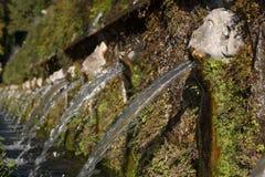 Fontana nel parco del d'Este della villa fotografia stock