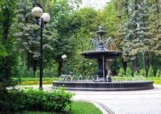 Fontana nel parco di Mariinsky Fotografie Stock Libere da Diritti