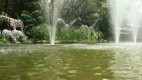 Fontana nello zoo video d archivio