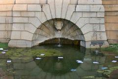 Fontana in pieno della lettiera Fotografie Stock