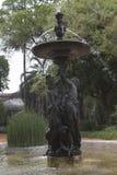 Fontana in primavera fra le piante del papiro Fotografia Stock