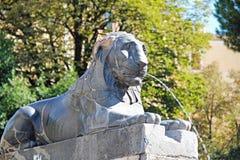 Fontana Scultura di un leone, Roma, Italia Immagini Stock Libere da Diritti
