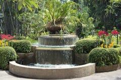 Fontana tropicale della flora Immagine Stock Libera da Diritti