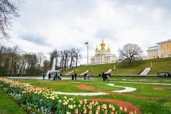 Fontane di Peterhof e vista e turisti del palazzo in San Pietroburgo immagine stock libera da diritti
