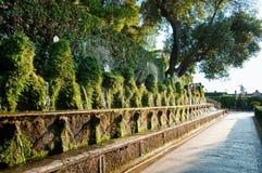 Fontane et couloir d'organisation du traité central en villa D-este Tivoli - à Rome Images stock