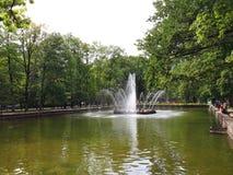 Fontanna «The Sun «w niskim parku Peterhof fotografia stock