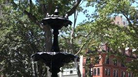 fontanna zbiory