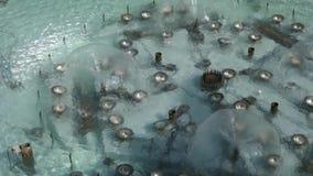 fontanna zdjęcie wideo