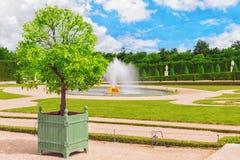 Fontanna blisko kwiatu łóżka w Sławni ogródy Versailles Obraz Stock