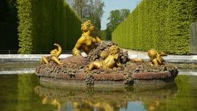 Fontanna flory, sezonowy staw przy Versailles Francja zdjęcie wideo
