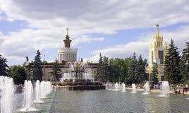 Fontanna kamienia kwiat Moscow Obraz Stock
