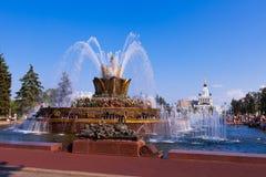 Fontanna kamienia kwiat w Moskwa Zdjęcia Stock
