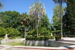 Fontanna lwy, Seville Fotografia Royalty Free