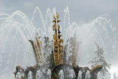 fontanna Moscow Zdjęcia Royalty Free