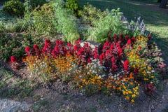 Fontanna ogródy Nimes Fotografia Stock