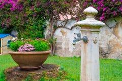 Fontanna po środku kwiatów Fotografia Stock