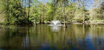 Fontanna przy Łabędzimi Jeziornymi Irysowymi ogródami, Sumter, SC Fotografia Royalty Free