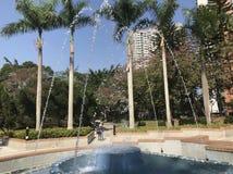 Fontanna przy Chai Bladym parkiem obrazy royalty free