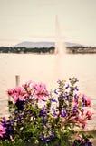 Fontanna przy Genewa Zdjęcie Stock
