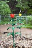 Fontanna w formie czerwonego tulipanu Obraz Stock