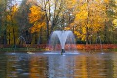 Fontanna w jesień parku zdjęcie royalty free