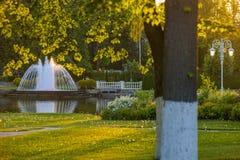 Fontanna w lato parku na jeziorze Fotografia Stock