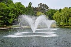 Fontanna w parku Obrazy Royalty Free