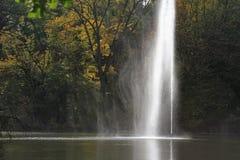 Fontanna w parku z drzewnym tłem Zdjęcia Royalty Free